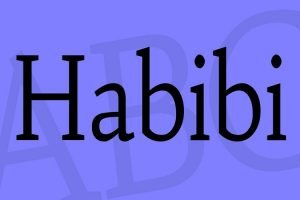 Habibi Font Family Free Donwload