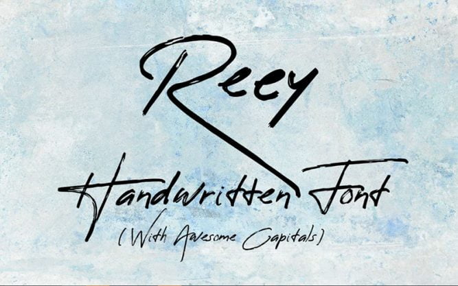 Reey Font Family Free Download