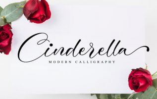 Cinderella Font Family Free Download