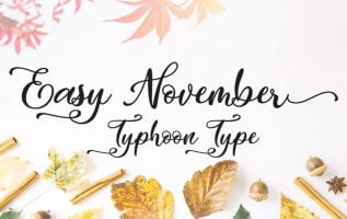 Easy November Font Family Free Download