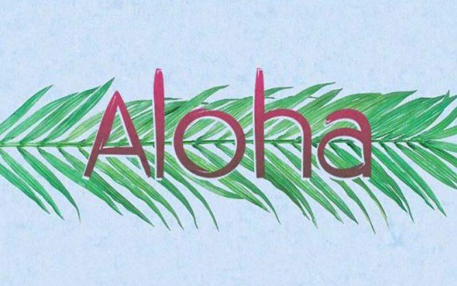 Aloha Font Family Free Download