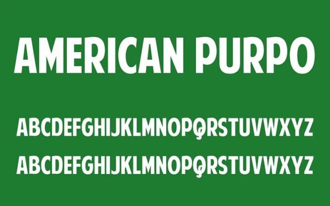 American Purpose Font Family Free Download