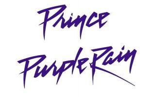 Purple Rain Font Family Free Download