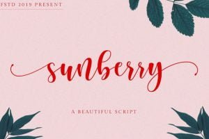 Sunberry Font Family Free Download