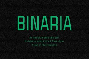 Binaria Font Family Free Download