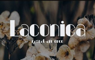 Laconica Font Family Free Download
