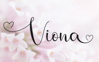 Viona Font Family Free Download