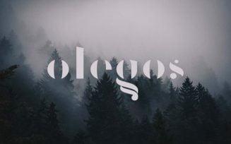 Olegos Font Family Free Download